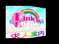 ピンク&ホワイト Nextの求人動画