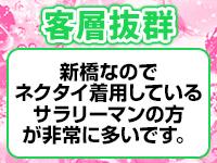 新橋平成女学園