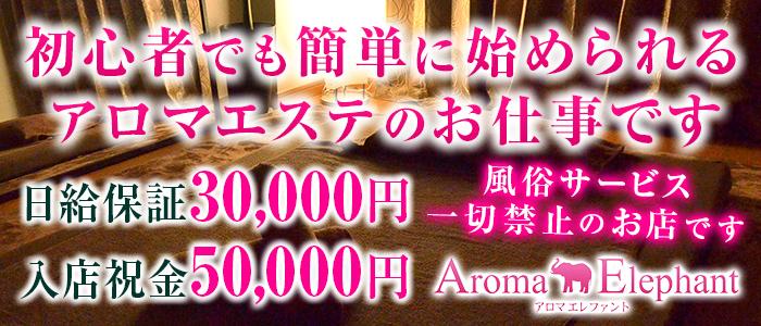 Aroma Elephant~アロマエレファント~