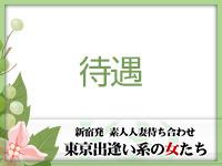 東京出逢い系の女たち