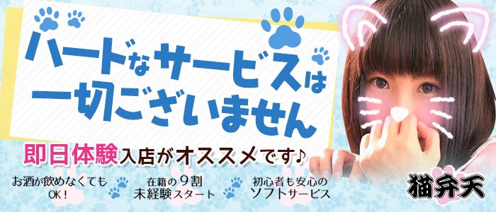 体験入店・猫弁天