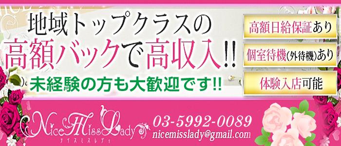 未経験・Nice Miss Lady
