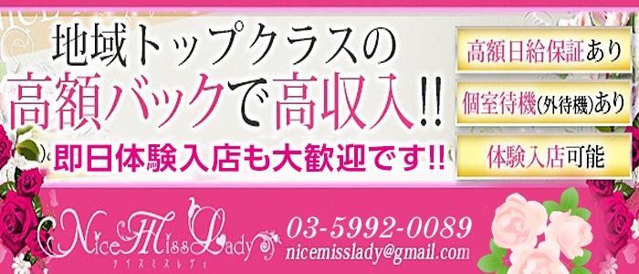体験入店・Nice Miss Lady