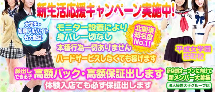 平成女学園桜町校(ミクシーグループ)