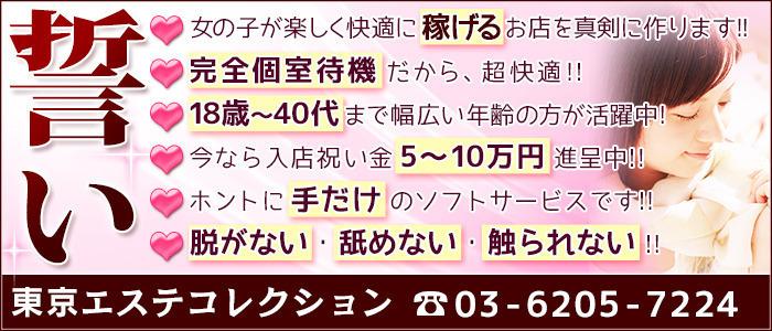 東京エステコレクション 新橋・銀座