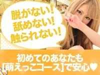 やんちゃな子猫 京橋店