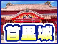 沖縄素人図鑑