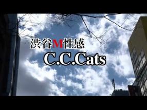 C.C.Catsの求人動画