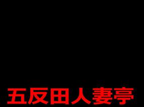 五反田 人妻亭の求人動画