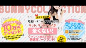 バニーコレクション秋田の求人動画