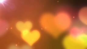 東京プレミアムクラブ ラブプリンセスの求人動画