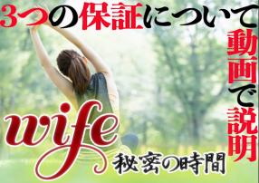 Wife~秘密の時間の求人動画