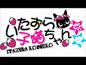 いたずら子猫ちゃん 難波店の求人動画