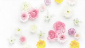 ライブチャットレディー jewel(ジュエル)奈良店の求人動画