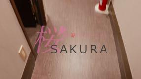 桜sakuraの求人動画