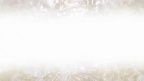 スイートバニラの求人動画