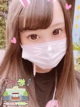 びび アナ学!~さいたまアナル学園~ (大宮発)