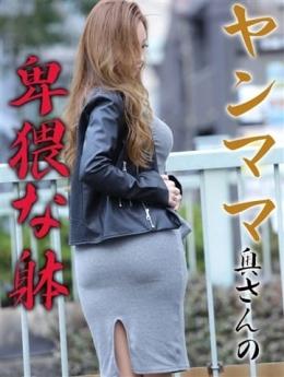 とわさん【シングルマザー】 エロ妻パラダイス (倉敷発)
