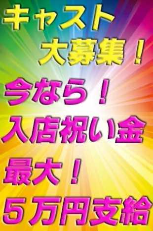 キャスト募集 素人人妻オフィス東金店 (東金発)