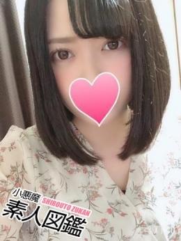 すみれ 小悪魔素人図鑑 (蒲田発)