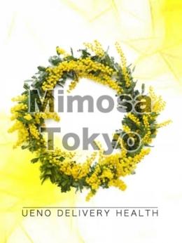 あい Mimosa Tokyo (上野・御徒町発)
