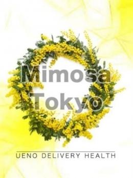 なつき Mimosa Tokyo (上野・御徒町発)