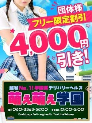 団体様フリー限定割引4000円 萌え萌え学園 (越谷発)