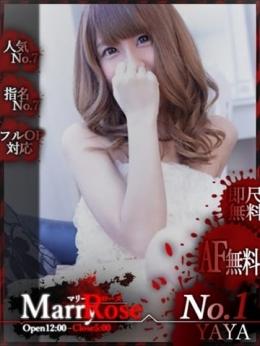 【YAYA/やや】 My Marry•Rose (三河安城発)
