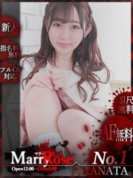 【KANATA/かなた】 My Marry•Rose (伊賀発)