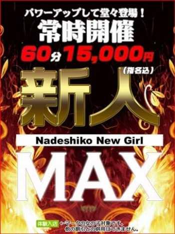 新人MAX 柏なでし娘~美少女日本人素人専門店~ (柏発)