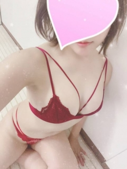☆みゆ☆ ラブラドール (静岡発)