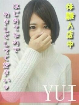 YUI Campus コスプレ系風俗専門店 (富士発)