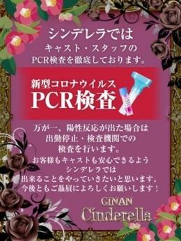 PCR検査キット利用店 (安心安全のシンデレラ) シンデレラ岐南店 (岐阜発)