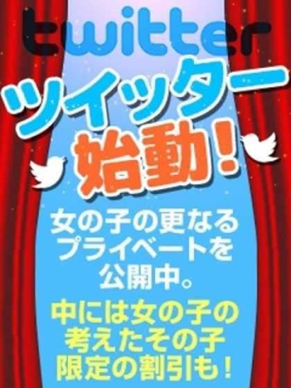 Twitter 厳選美女専門デリバリー STELLA TOKYO (錦糸町発)
