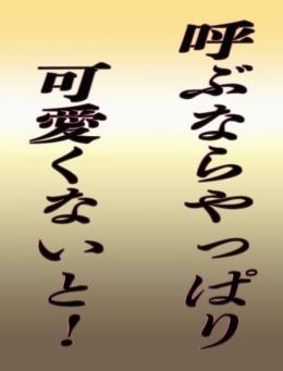 満足するデリヘル遊び 安デリ美女 ~安心・安価なデリヘル~ (西船橋発)