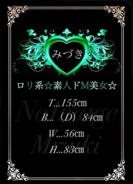 みづき デリバリーヘルス夜遊び場本店 (太田発)