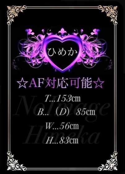 ひめか デリバリーヘルス夜遊び場本店 (太田発)