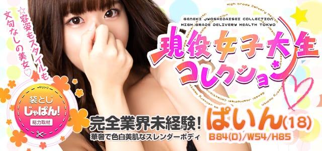 袋とじじゃぱん! 現役女子大生コレクション-ぱいん