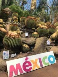 メキシコ??