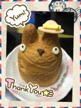トトロ可愛い(*゚∀゚*)
