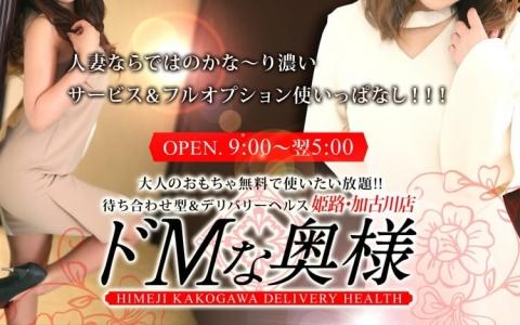ドMな奥様 姫路・加古川店