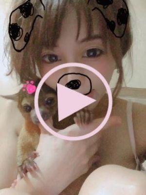 【動画】ちびはヤキモチちゃん♪