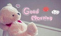 おはようございます(⌒‐⌒)