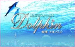 姫路ドルフィン