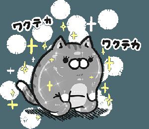 明日からは…( ?ω?)!