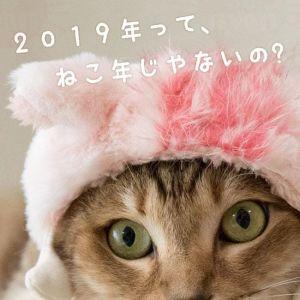 年明けの予定ゎ。。