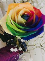 Rainbow Rose<img class=&quot;emojione&quot; alt=&quot;💐&quot; title=&quot;:bouquet:&quot; src=&quot;https://fuzoku.jp/assets/img/emojione/1f490.png&quot;/>
