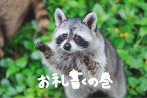 書くよん!!