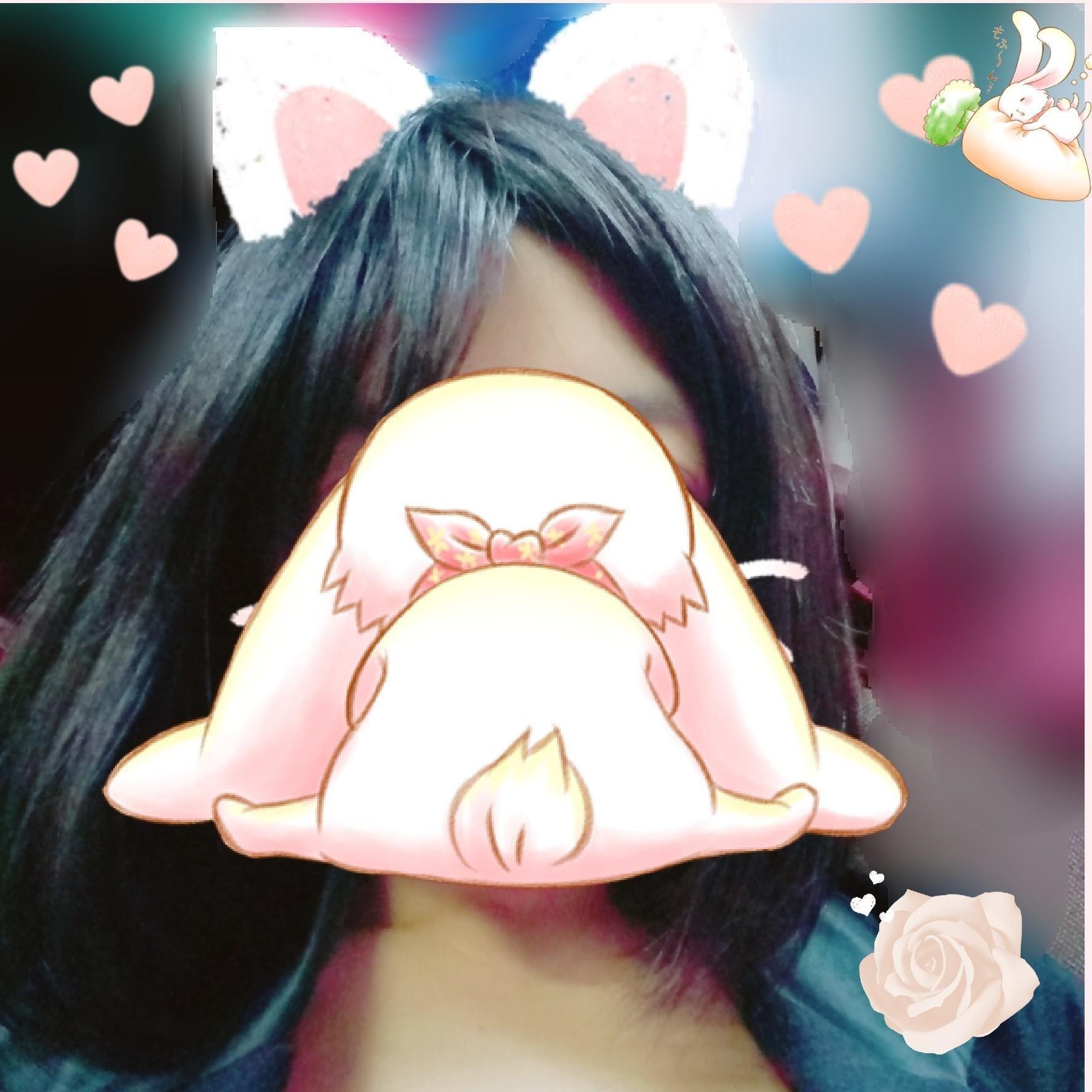 こんにちは(*´∀`)