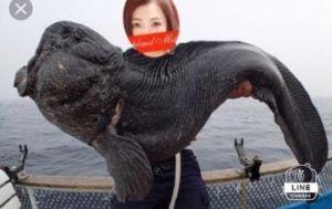 夢はおおかみ魚!!